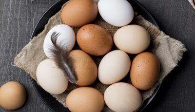 تفسير رؤية البيض في المنام للمتزوجة ودلاله كسره وقشره في الحلم