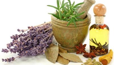 علاج البواسير في المنزل بالأعشاب وطرق مجربة